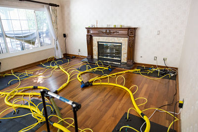 water damage and mold removal equipment in home